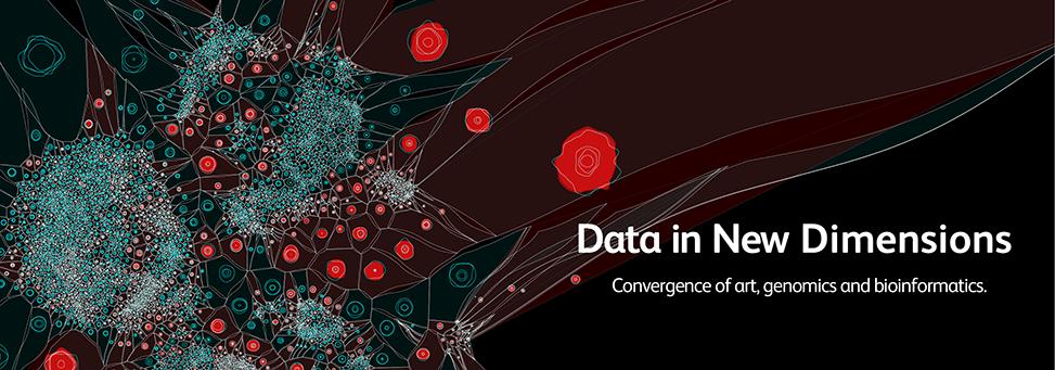 Data Visualization Design And Information Munging