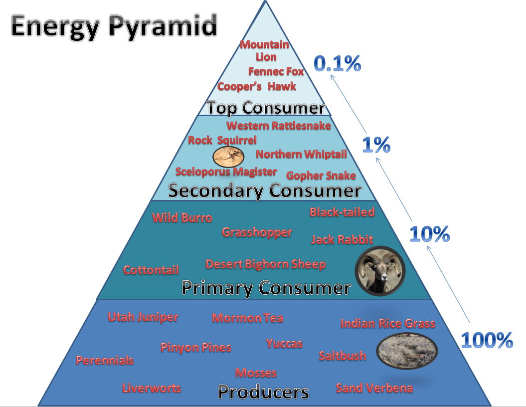 Energy Pyramid Of The Canyonlands Ml816