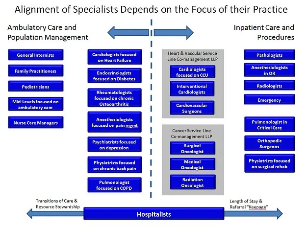 Explaining Alternative Types Of Aco Structures How Do Co Management Arrangements And Hospitalists Fit In Reward Health