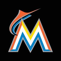 Miami Marlins Minor League System