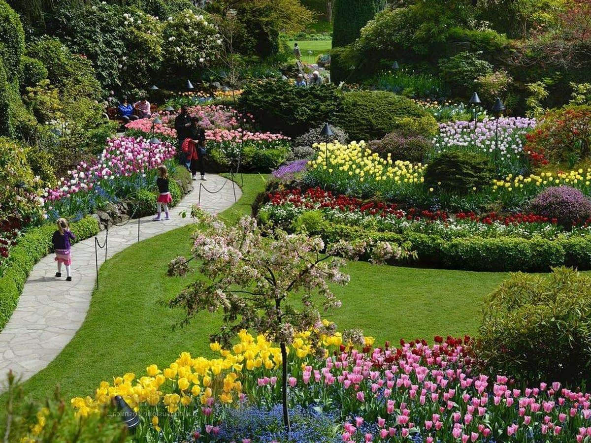 Fiori e giardino 2 1 e1592365971953
