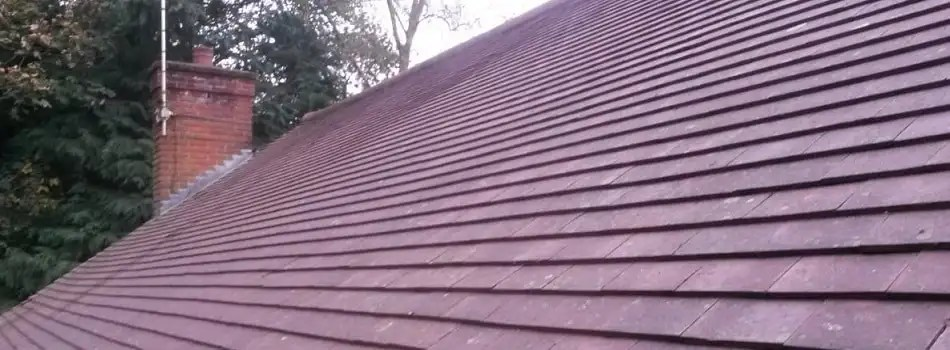 norfolk roof cleaning company roof
