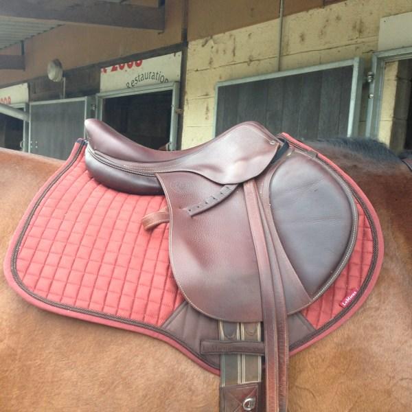 marque le mieux equitation mlleponey com