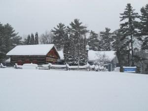 Museum Winter