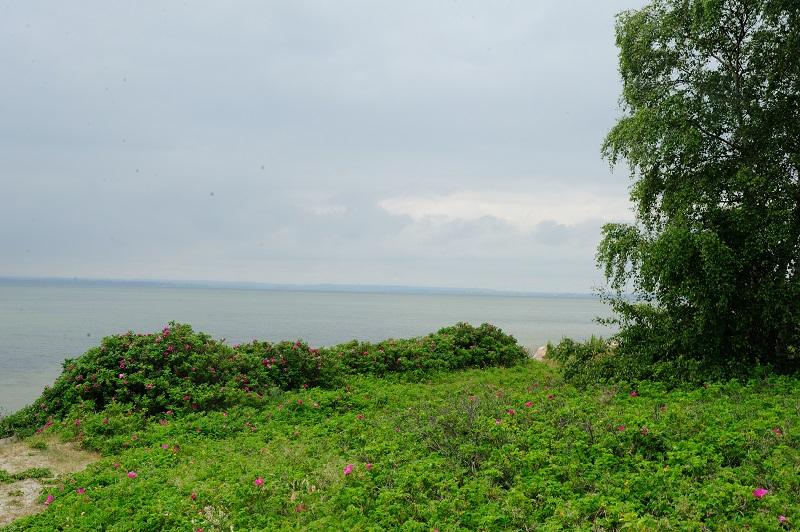 gdzie jechać nad polskie morzegdzie jechać nad polskie morze