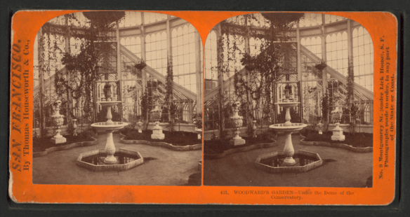 800px-Woodward's_Gardens,_under_the_Dome_of_the_Conservatory,_from_Robert_N._Dennis_collection_of_stereoscopic_views_2