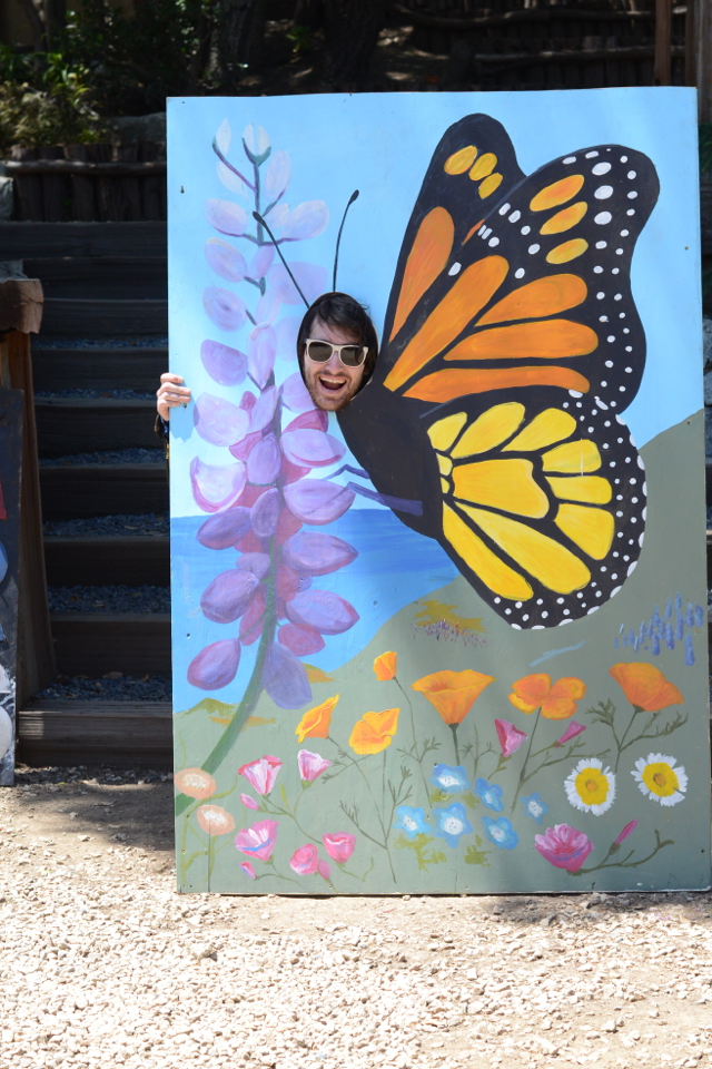 Anthony the Butterfly,  M Loves M