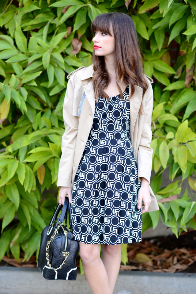 trench coat and plenty by tracy reese dress M Loves M @marmar