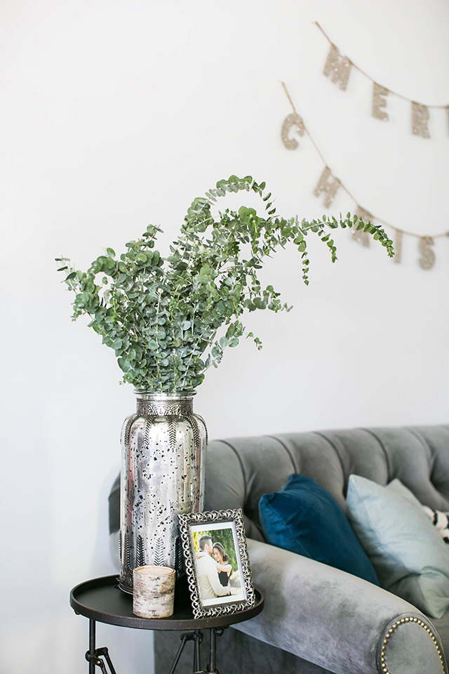 eucalyptus in a jar for the holidays M Loves M