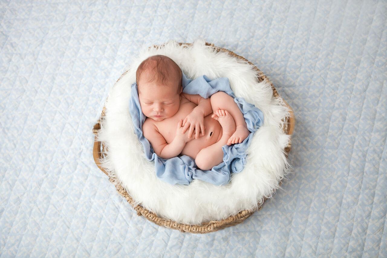 sweet newborn photoshoot of baby augustine