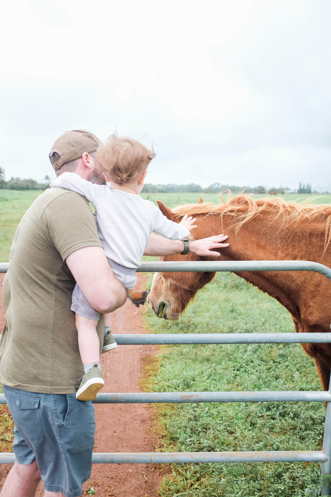 Augustine pets a horse for the first time