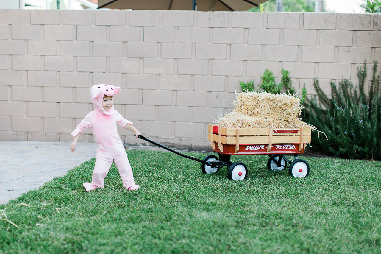 A baby pig Halloween costume. - M Loves M @marmar