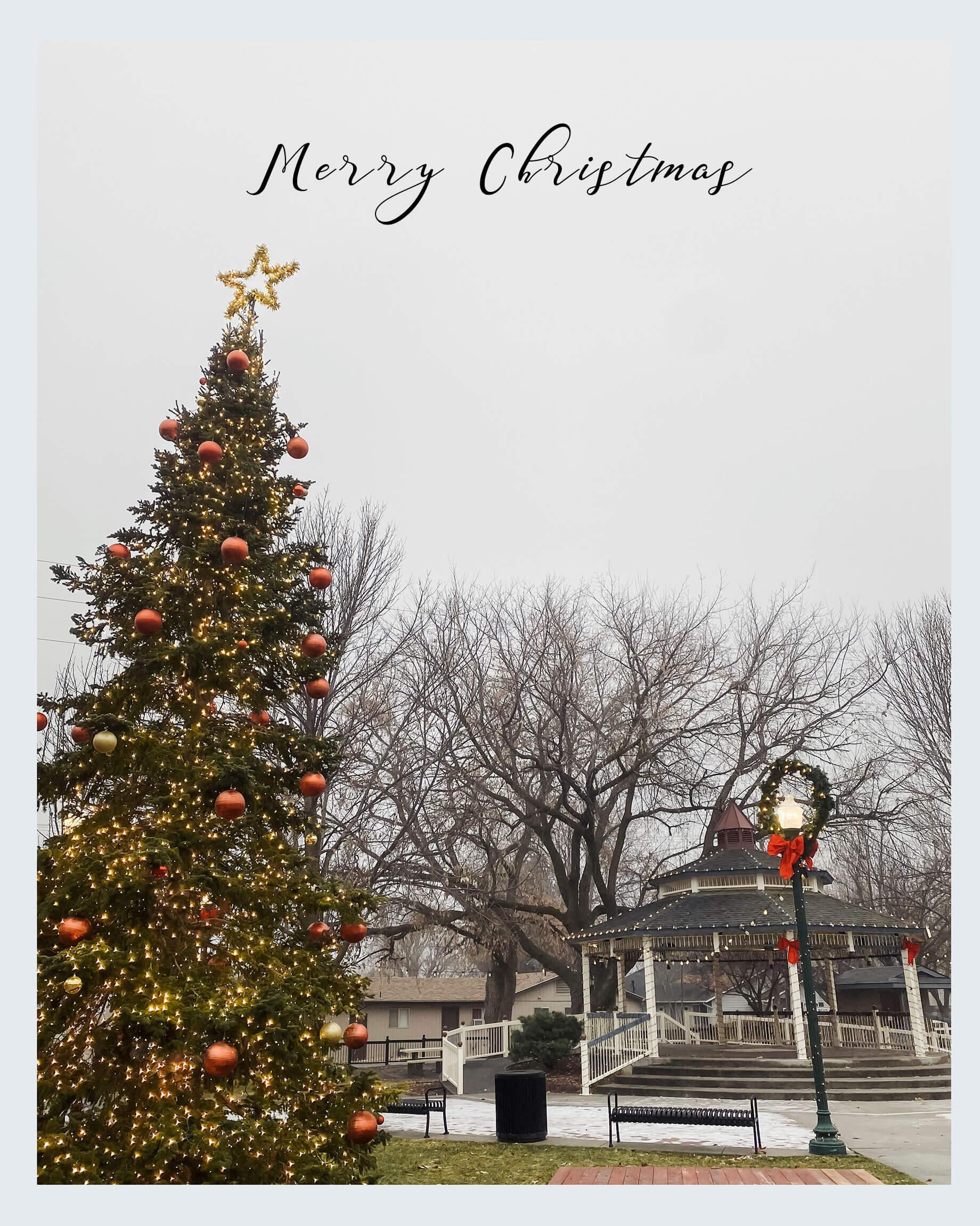 merry christmas - M Loves M @marmar