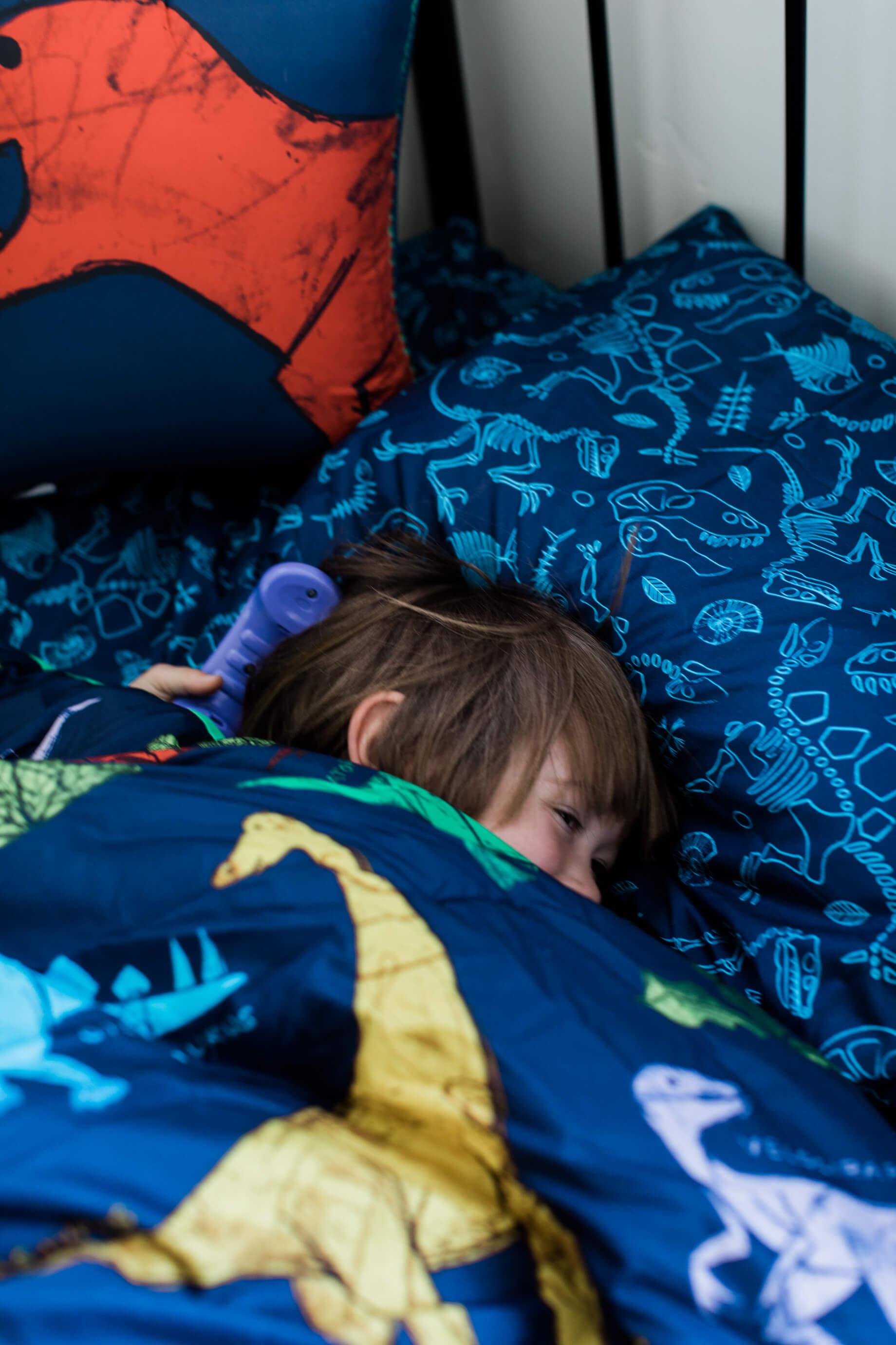 dinosaur bedding sheets - M Loves M @marmar