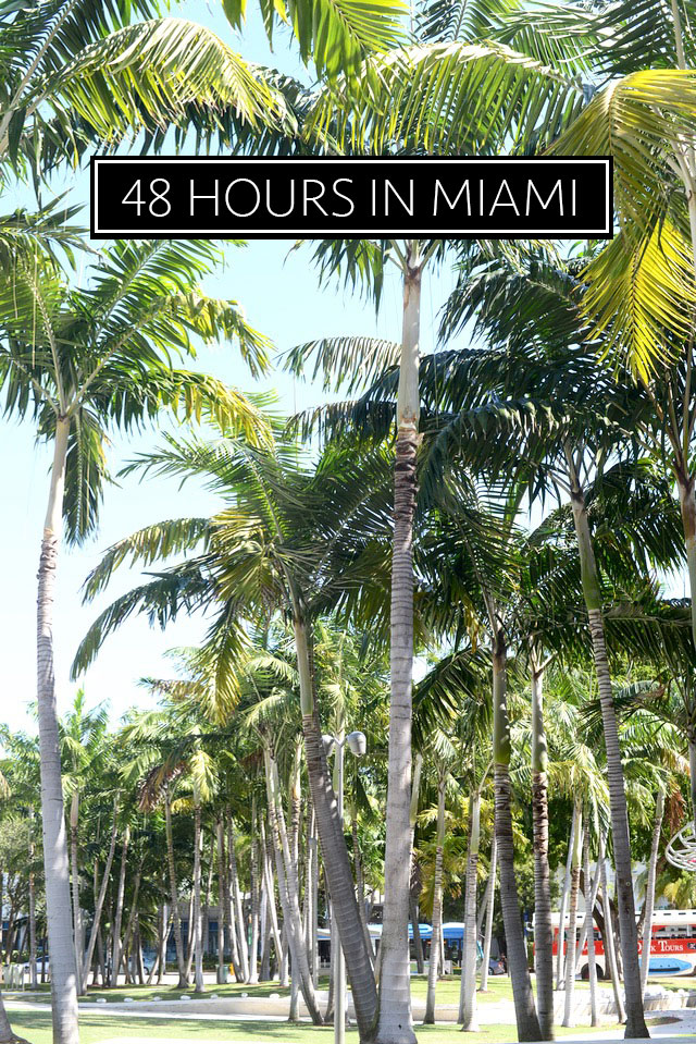 48 hours in miami M Loves M