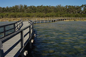 300px-Lake_clifton_gnangarra_03