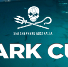 Sea Shepherd 'The Shark Cull' documentary film