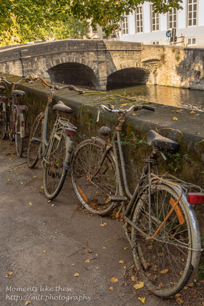 Bikes from the canal?
