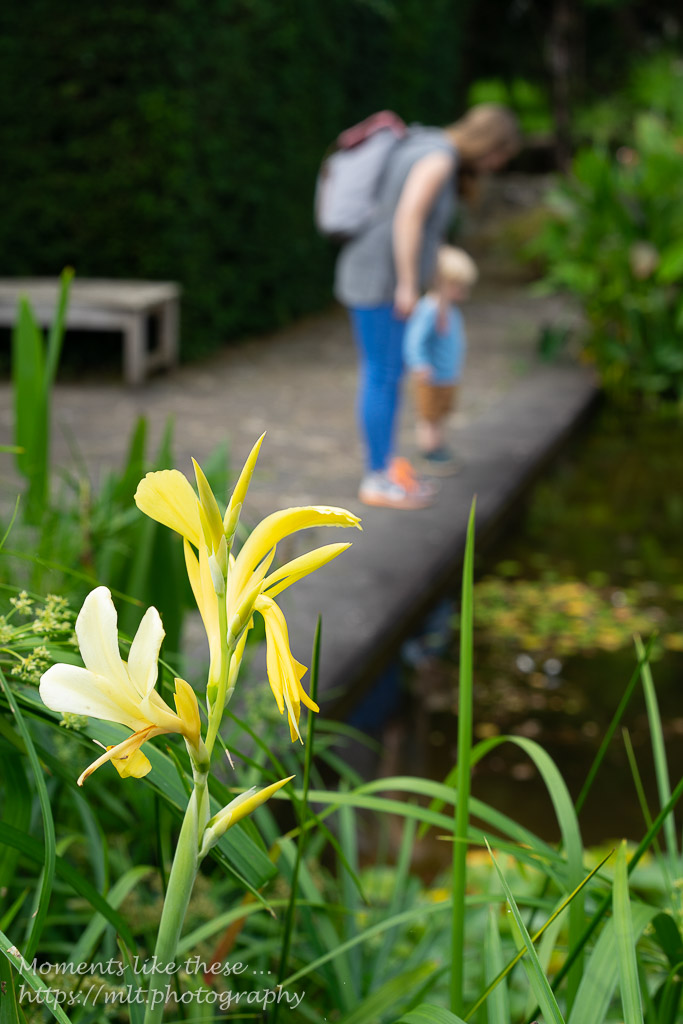 Stop here a while - Dyffryn Gardens