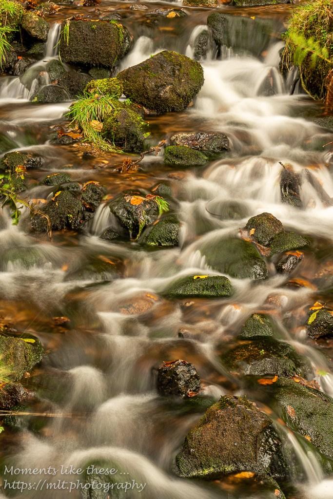 Silky cascade