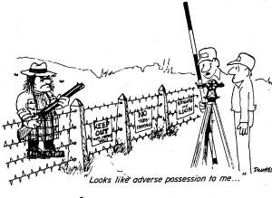 AdversePossessionCartoonSurveying