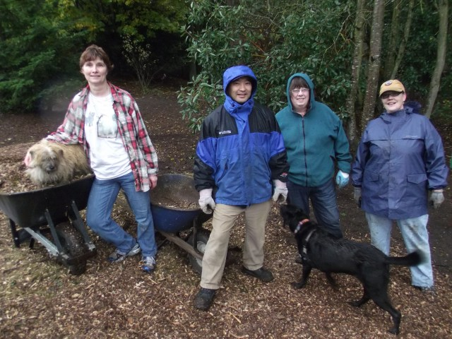 MLT DOG volunteers at work, from left: Chris Cannon, Jim Ito, Janice Bergman and Kimberly Slone, with Sassi in the wheelbarrow and Tasha the black lab mix in front.