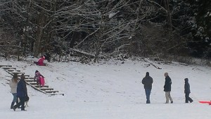 Children at play at Terrace Creek Park last winter. (Photo by Doug Petrowski)