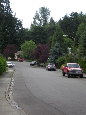 The residential street where Aaron Ybarra was found by MLT police in xxx.
