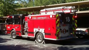 Fire Personnel from Snohomish County Fire District 1, Lynnwood and Bothell responded to a 2-alarm fire at the Taluswood Apartments Friday in Mountlake Terrace.