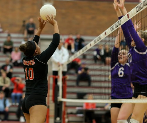 Terrace's Kierra Scott (left) looks to place the ball past the Wildcats' front line.