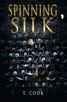 Spinning Silk by T Cook