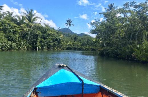 Indian River - balade en bateau voyage à la carte