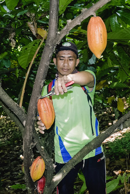 The full range of Van Houten Professional products have 100% sustainably-source cocoa via the Cocoa Horizon Foundation, positively impacting livelihoods in cocoa farming communities in Sulawesi