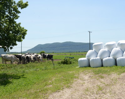 Farmers with livestock commonly preserve hay and silage in plastic wrap. Though a beneficial farm tool, the plastic requires end-of-life management. This Cleanfarms project is examining how plastic wrap and other used materials can be recovered for recycling.   - Cleanfarms photo (CNW Group/CleanFARMS Inc.)