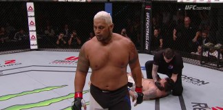 Mark Hunt Frank Mir UFC Fight Night 85