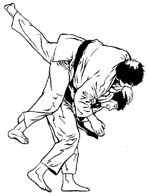 What is Mixed Martial Arts Classes