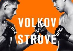 ufc-fight-night-115-struve-vs-volkov