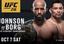 ufc 216 demetrious johnson ray borg