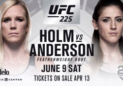 holly holm megan anderson