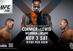 UFC 230
