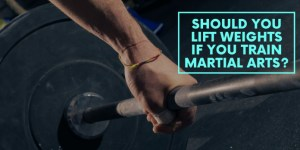 Should You Lift Weights If You Train Martial Arts?