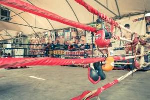 7 Best Muay Thai Gloves For Beginners
