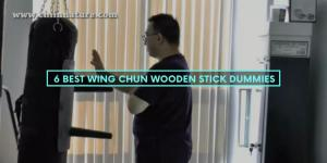 6 Best Wing Chun Wooden Stick Dummies