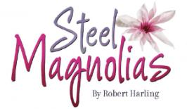 Steel-Logo-752