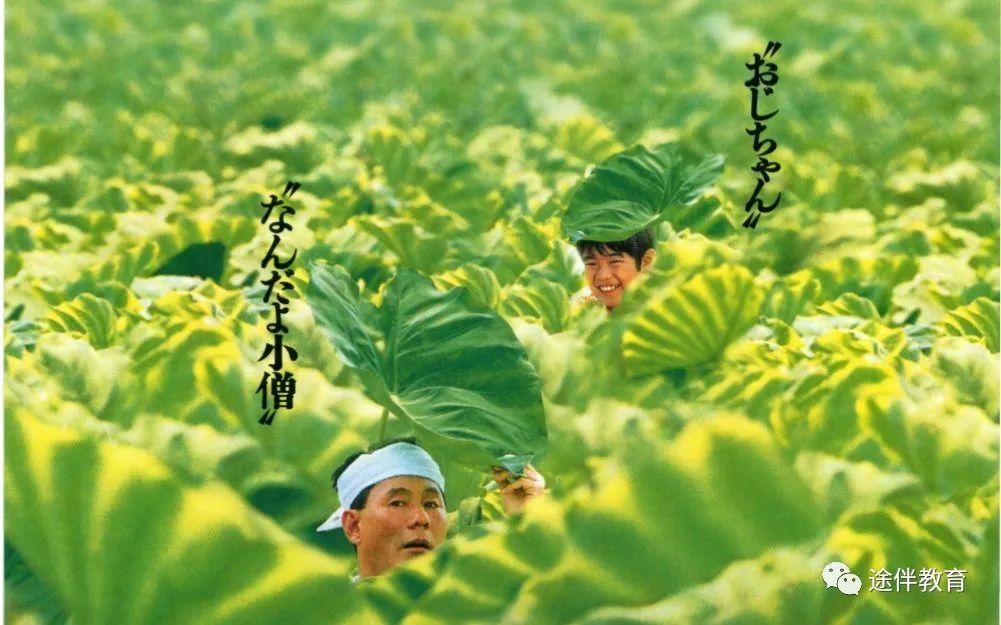 菊次郎的夏天類似電影 _排行榜大全
