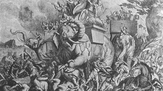Hasil gambar untuk gajah kecil perang mesir