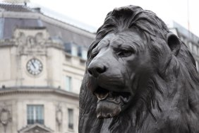 lion-on-the-trafalgar-square-871280326399Lp2O