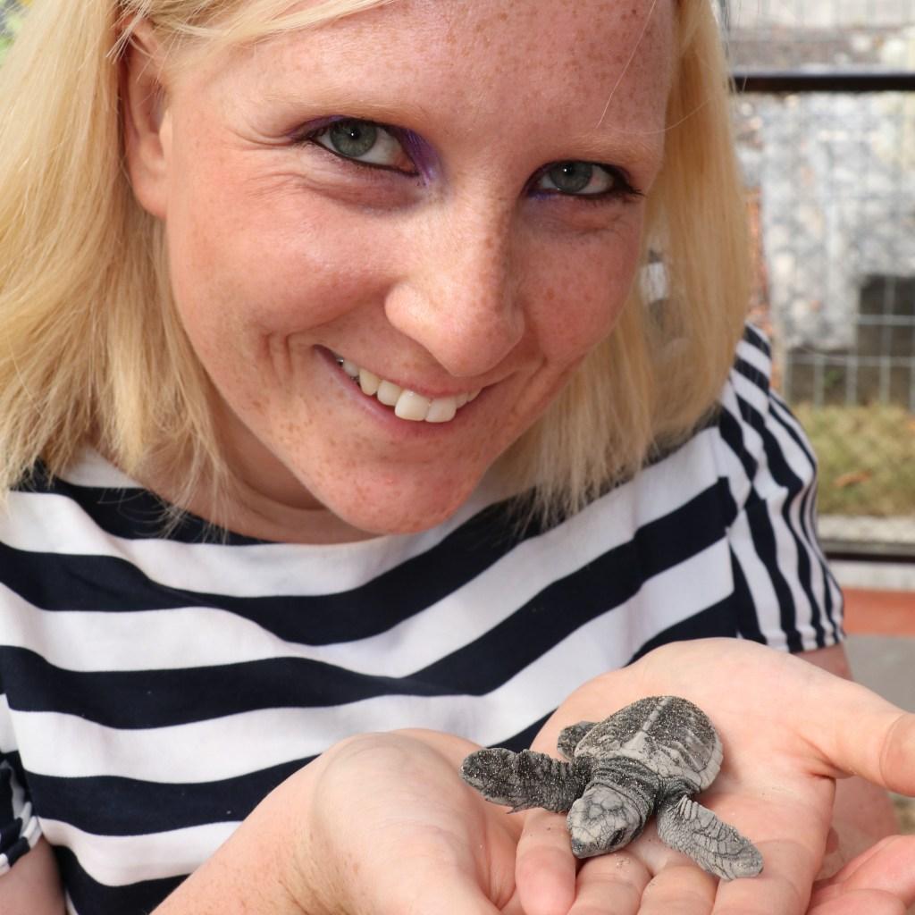 Schildkröten-Adoption auf Bali (Tierrettung)