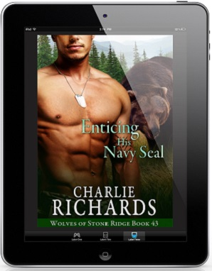 Enticing His Navy Seal by Charlie Richards