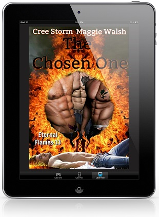 The Chosen One by Cree Storm & Maggie Walsh
